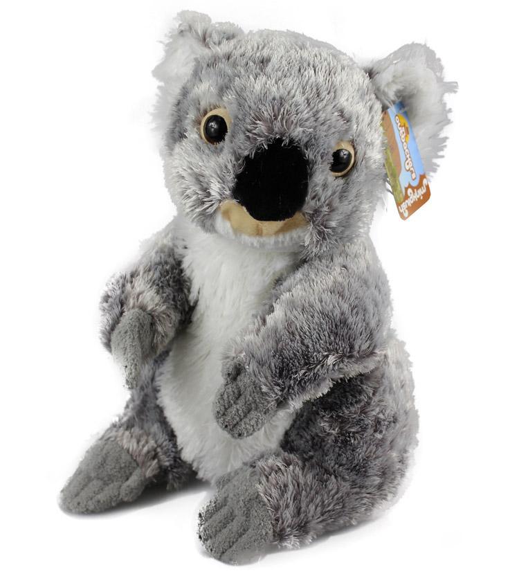 Nellie Koala Australia The Gift Australia The Gift