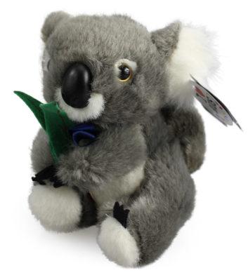 Koala Musical