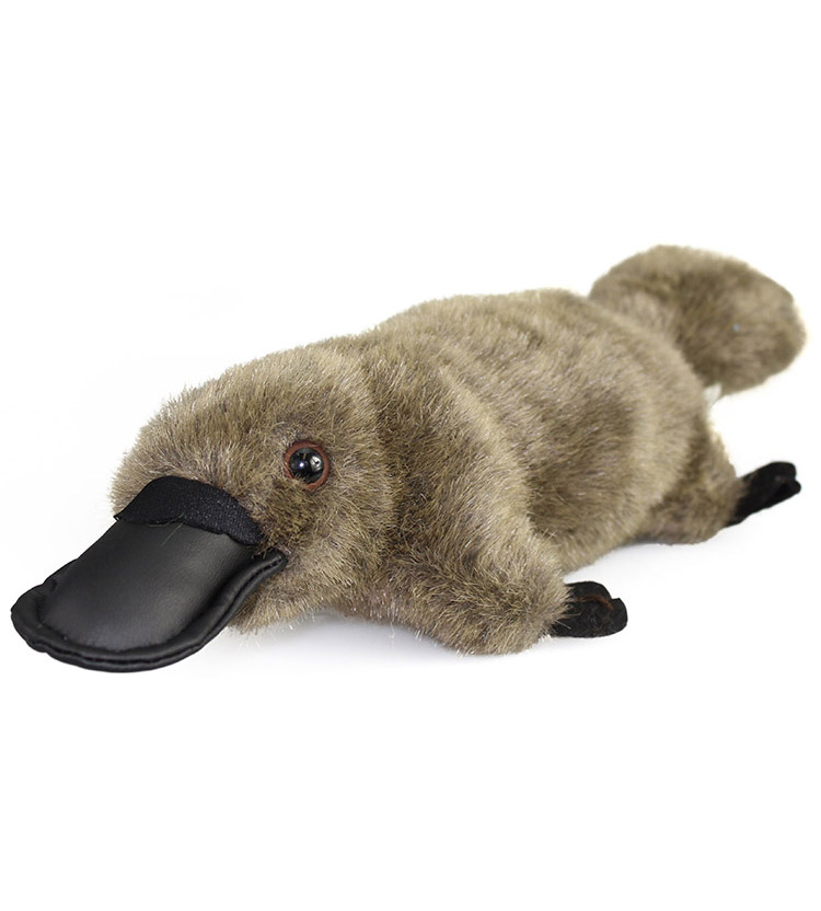 Platypus Australian Made 30cm Australia The Gift