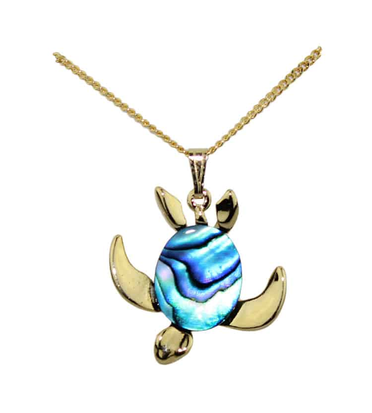 Coin shell and turtle charm necklace