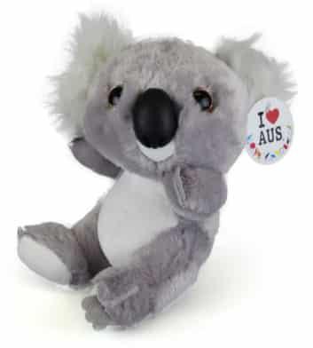 Big Head Koala
