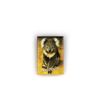 54577_Magnet-Koala-Gallery-Finish