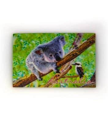 Koala 3D Postcard