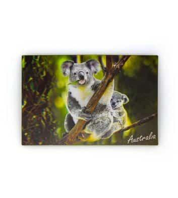 Koala Baby 3D Postcard