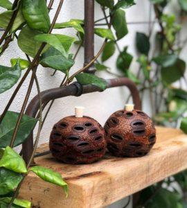 Banksia Eucalyptus Pod