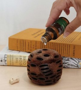 Banksia Pod Gift Set