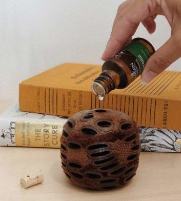 Banksia Gift Set