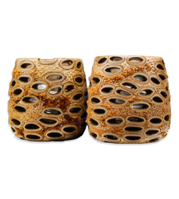 Banksia Hollow Tea Light Holder 2 Pack