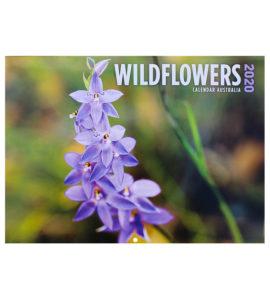 Australian Wildflower 2020 Calendar